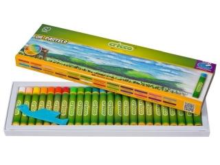 Pastele olejne CRICCO 24 kolory