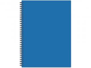 D³ugopis ¶cieralny PENMATE Flexi abra, niebieski display HUR