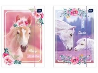 Teczka z gumk± A4+ INTERDRUK LUX UV kolekcja Pony