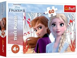 Puzzle   60 TREFL Kraina Lodu - Zaczarowany ¶wiat Anny i Els