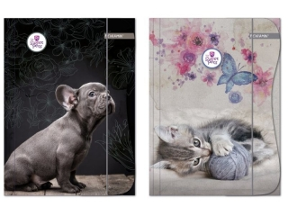 Teczka z gumk± A4 BENIAMIN The Sweet Pets