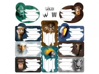 Naklejki na zeszyty BENIAMIN Wild