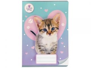 Zeszyt A5 16k. BENIAMIN The Sweet Pets - Kot, kolorowe trzy