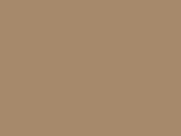 Světle hnědý karton A4 - 20 kusů