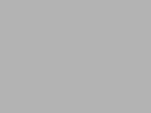 Stříbrný karton A4 - 20 kusů