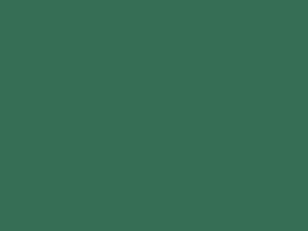 Tmavě zelený karton A4 - 20 kusů