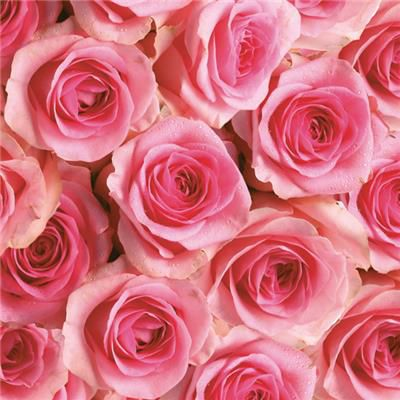 Ubrousky MAKI - růže, 3-vrstvé