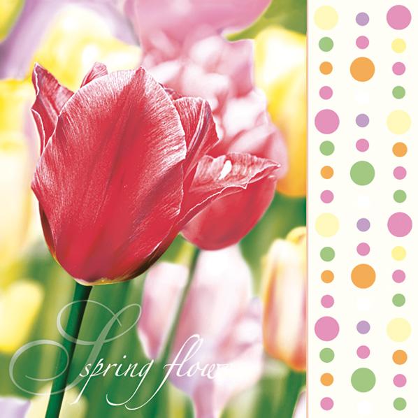 Ubrousky MAKI - červené tulipány