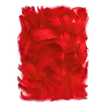 Červené peří DPCraft 5-12 cm, 10 g