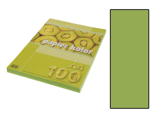 Xerox papír A4 světle zelený, 100 kusů