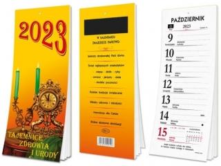 Kalendarz SAPT Tygodniowy 2021 z magnesem