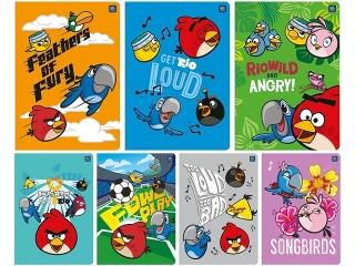 Ko³ozeszyt A6 80k. INTERDRUK Angry Birds Rio kratka