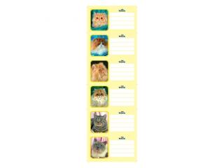 Naklejki na zeszyt Victoria Koty zestaw 1 a'25