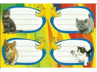 Naklejki na zeszyty POLSYR Ma³e - koty 25ark.