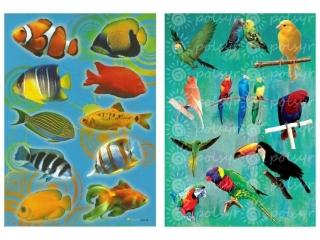 Naklejki POLSYR Du¿e - rybki/papugi 25szt.