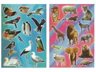 Naklejki POLSYR Du¿e - dzikie koty/ptaki 25szt.
