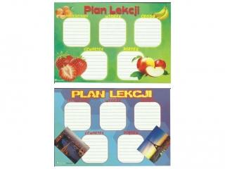 Plan lekcji (naklejka) M widoki/owoce