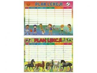 Plan lekcji D sport/konie 2020