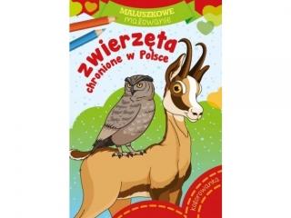 Kolorowanka SKRZAT Maluszkowe malowanie - Zwierzêta chronione w Polsce