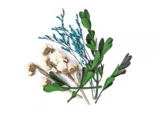 Suszone kwiaty dekoracyjne DPCRAFT